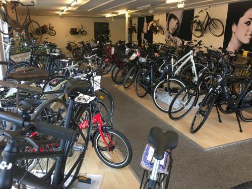 Cykler i udstillingen